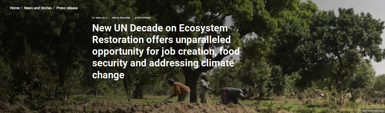 2021-2030 : Décennie de la restauration des écosystèmes